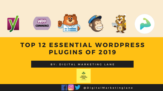 WordPress Plugins essential for a WordPress Site