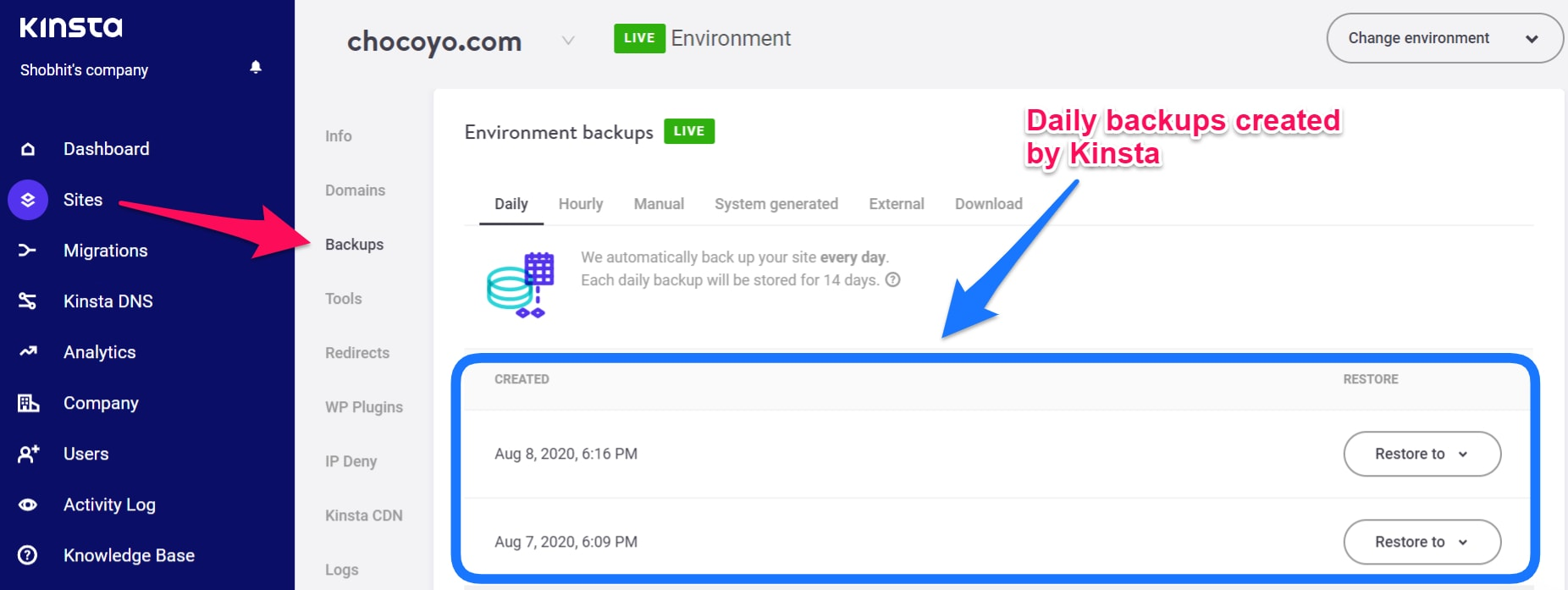 Kinsta Features and review with Daily Backups